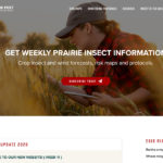 Website helps monitor insect pests