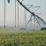 The Saskatchewan government has made irrigation a key focus of its agricultural vision, but it will also require a competitive tax and regulatory regime, a qualified labour pool, improved transportation , adequate support for technology development and improved trade infrastructure.  |  File photo