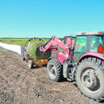 Bale silage is one method to protect feed for winter
