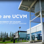 Calgary veterinary school boosts diagnostic abilities