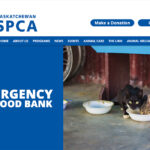 Pet food banks planned for Sask.