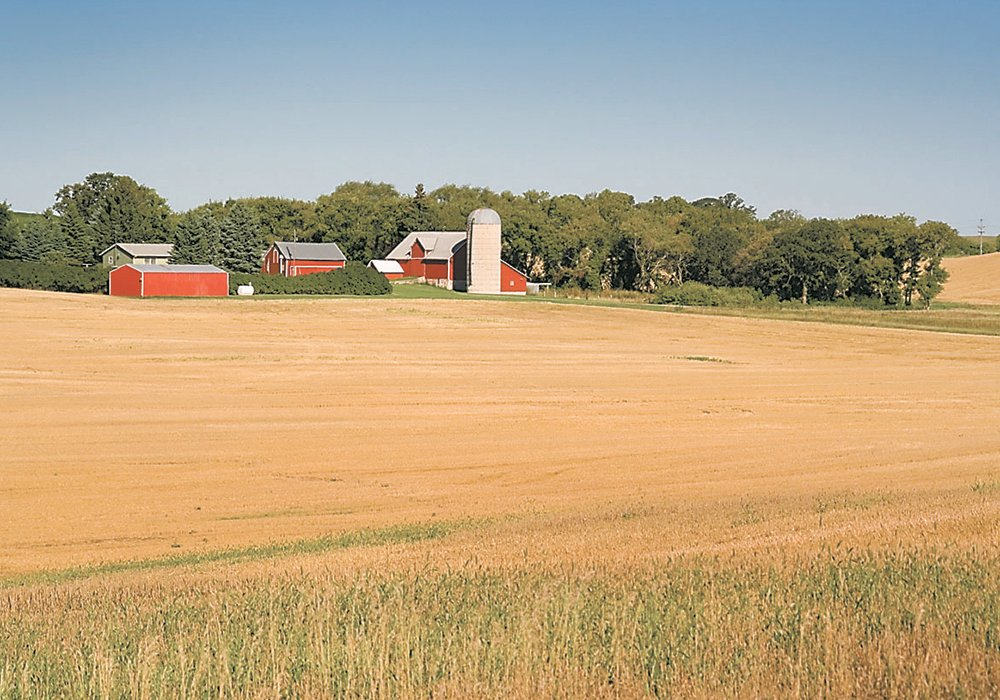 Would you buy your farm, if you were an investor? | File photo