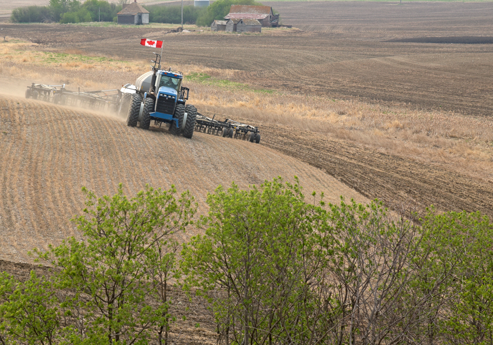Canada's agriculture sector is in a position to help lead the post-pandemic economic recovery. But in order to do so, farmers are telling their governments that they cannot do it without help. | File photo