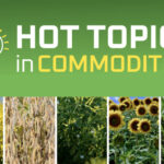 Online series covers Hot Topics in Commodities