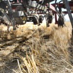 Producers won't be getting any credit for being zero-till, or having perennial forage coverage, particularly if those efforts were completed prior to 2017. | File photo