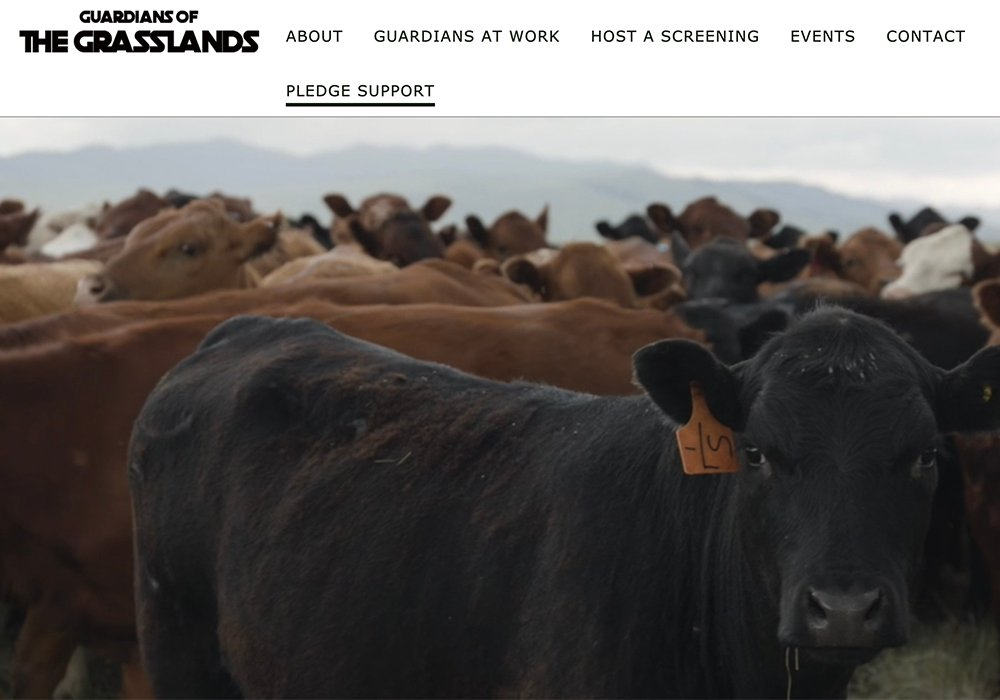 The collaboration will support the development of agriculture education resources including a teacher guide for Guardians of the Grasslands, a documentary that explores the state of the Great Plains grasslands and the role cattle play in its survival. | Screencap via guardiansofthegrasslands.ca