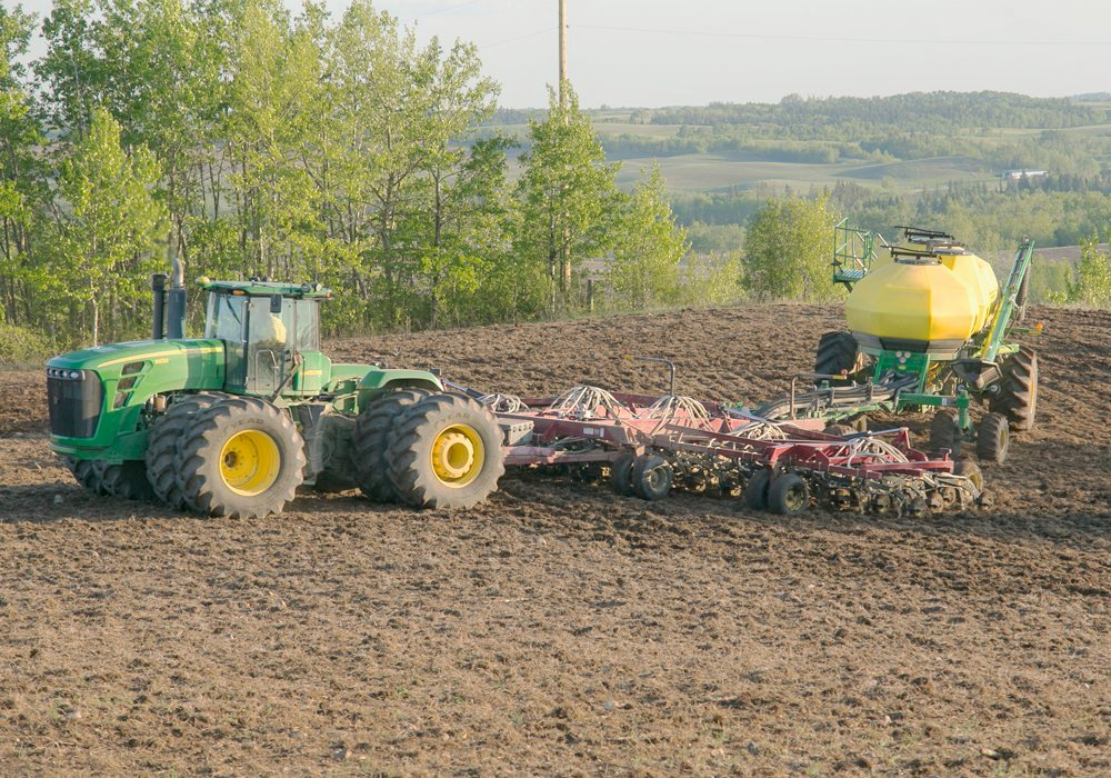 According to Statistics Canada's annual planting intentions report released last week, Canadian producers will plant an estimated 21.5 million acres of canola this spring, up nearly 750,000 acres from last year. | File photo