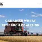 U of A signs wheat deal with farm groups