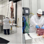 Stung by pandemic and JBS cyberattack, U.S. ranchers build new beef plants